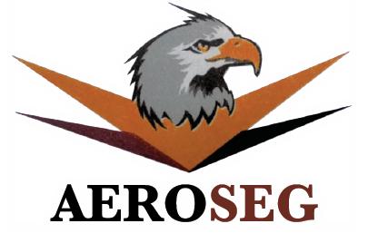 Aeroseg